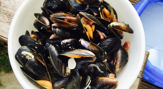 Mussels with Bacon, Cider and Thyme