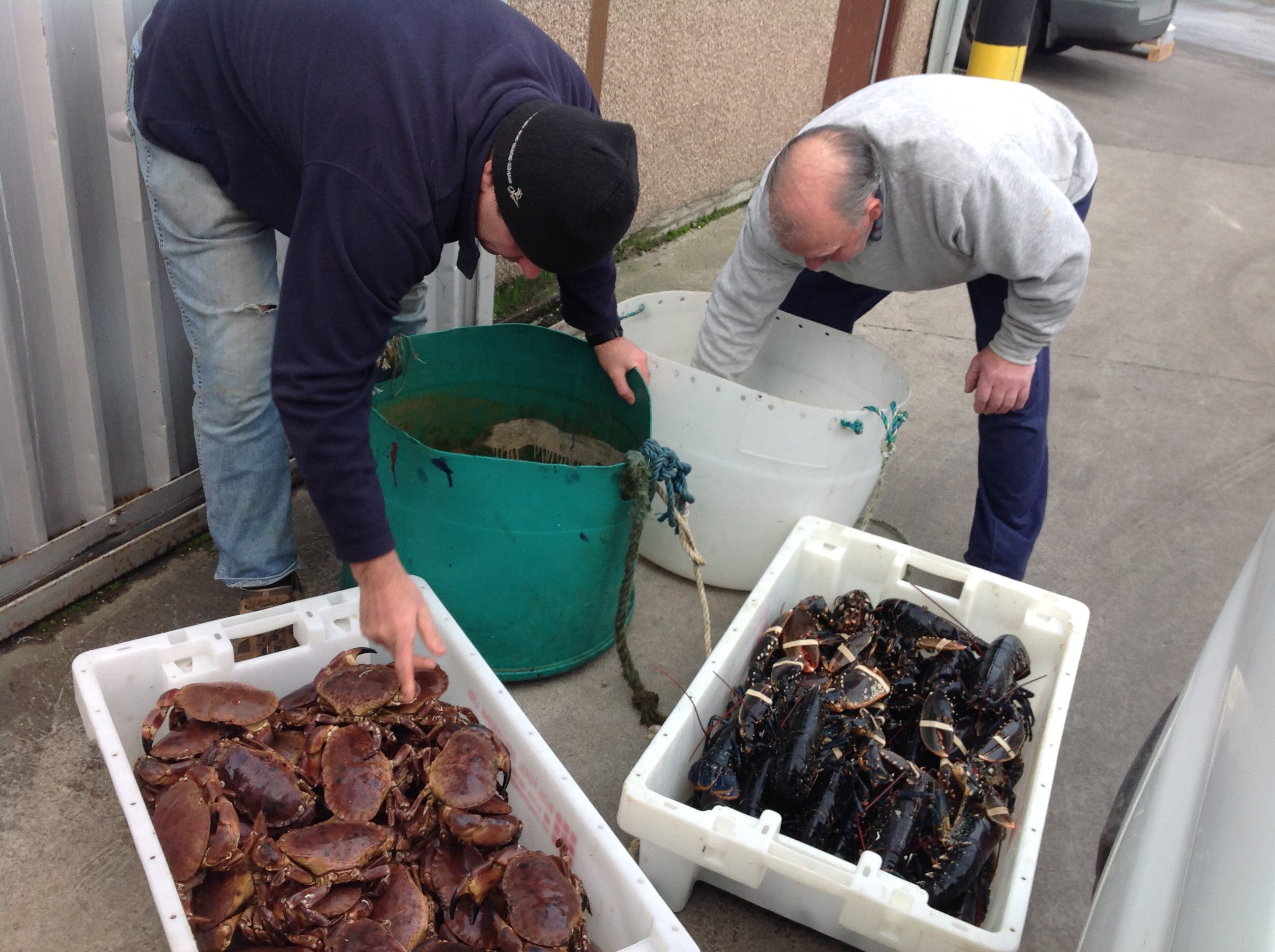 Our Fishermen delivering fresh Shellfish to Fishbox HQ