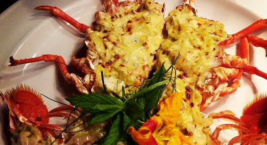 Chef's Special Grilled Lobster with Whisky, Sweet Red Pepper, Red Onion and Cheese Sauce
