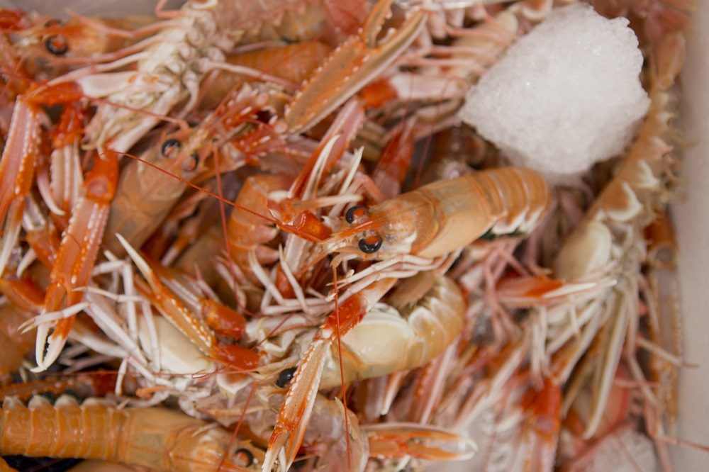 how to cook raw langoustines