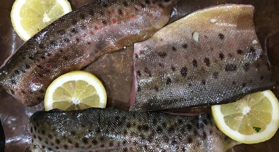 Moroccan-Spiced Brown Trout